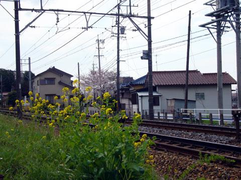 2008_04_01-001.jpg