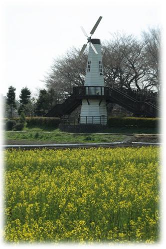 200832301.jpg