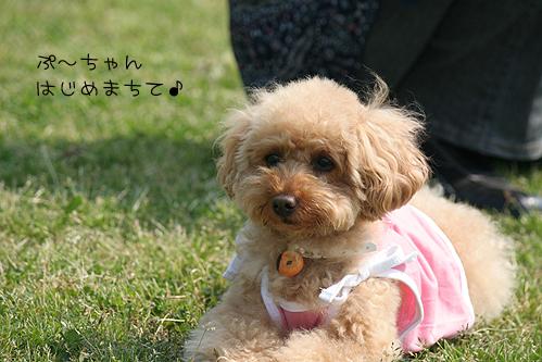 PIC011.jpg