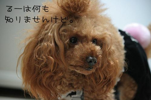 goinsoudou01.jpg