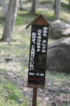 080523samani_hyougo2.jpg