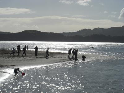 Whitianga ビーチ2