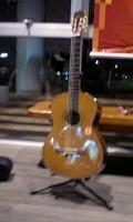 ジャカジャン!艦長さんのお宝ギター