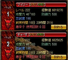 1113ファミ