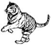 tiger_20080416230815.jpeg