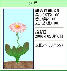 信じられない植物『2号』