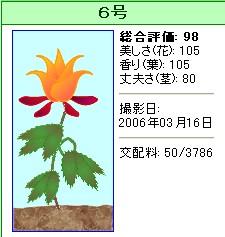 信じられない植物『6号』