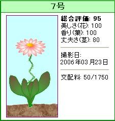 信じられない植物『7号』