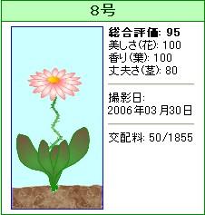 信じられない植物『8号』