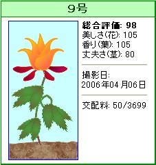 信じられない植物『9号』