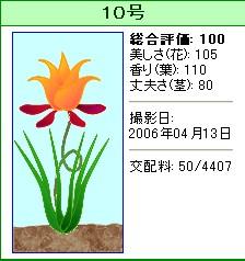 信じられない植物『10号』