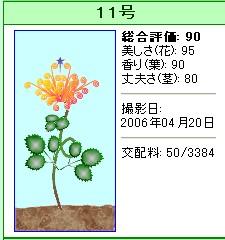 信じられない植物『11号』
