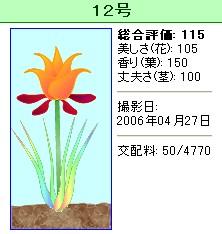 信じられない植物『12号』