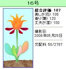 信じられない植物『16号』