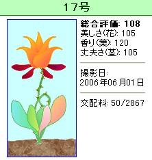 信じられない植物『17号』