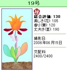 信じられない植物『19号』