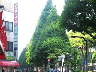 20080610-4.jpg