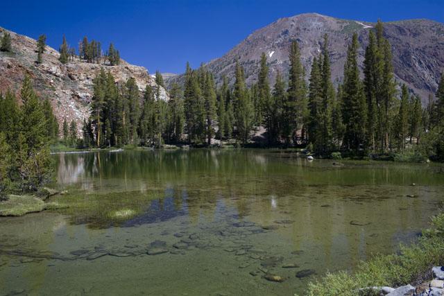 to Mono Lake4