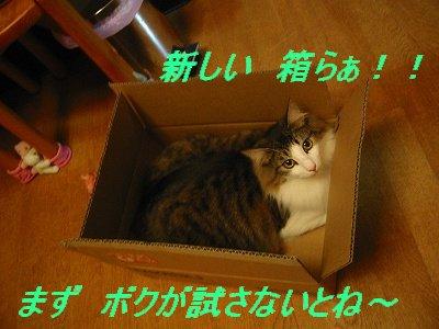 2-168_6809.jpg