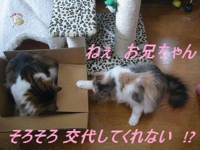 2-168_6816.jpg