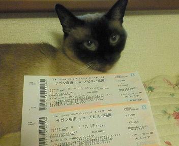 200529 チケット