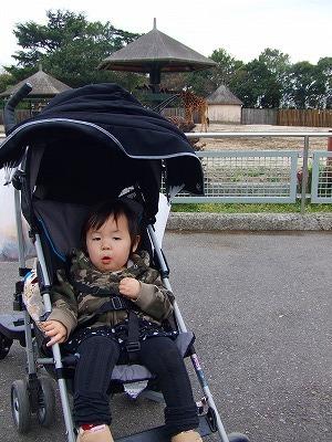 2008_0511舎人TDL富山ららぽ0013