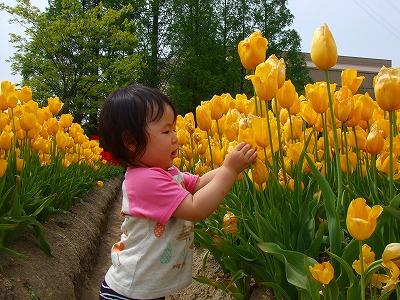 2008_0511舎人TDL富山ららぽ0123
