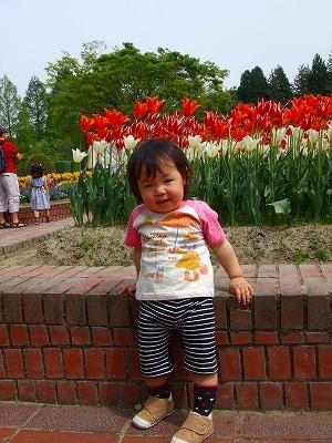 2008_0511舎人TDL富山ららぽ0126