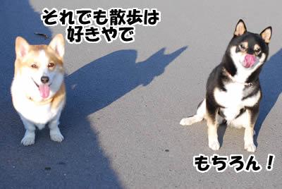 20080422_0079.jpg