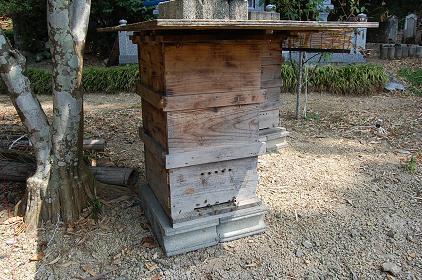 巣箱(重箱)