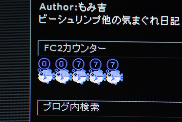 resize0240.jpg