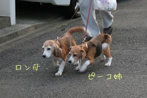 2008_04_20.jpg