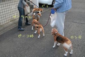 2008_04_20_2.jpg