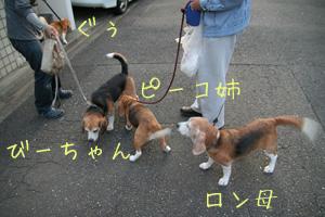2008_04_20_3.jpg