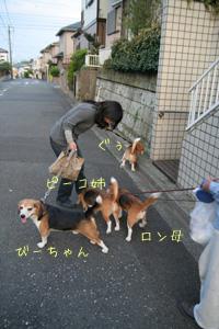 2008_04_20_4.jpg