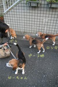 2008_04_20_6.jpg