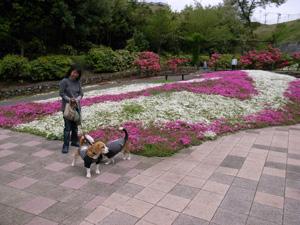 2008_04_21_2.jpg