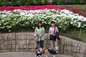 2008_05_05_13.jpg