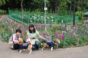 2008_05_05_14.jpg