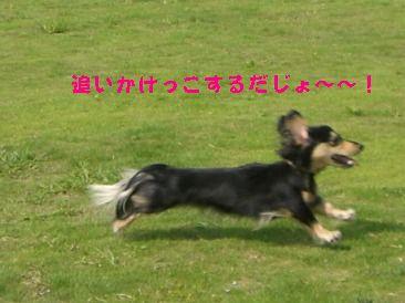 CIMG4477.jpg