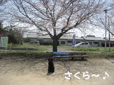 b32901.jpg
