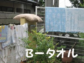 b62701.jpg
