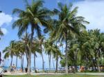 ハワイ旅行 169