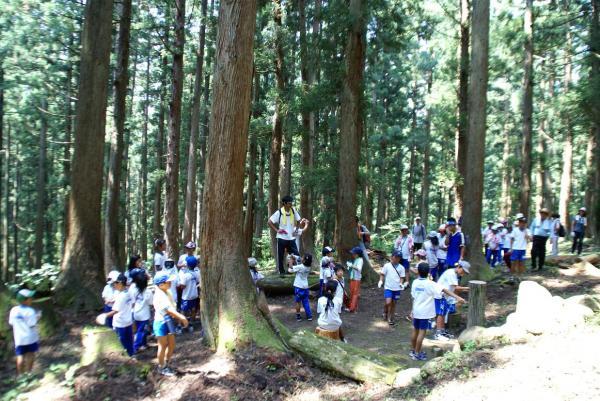 瞑想の森2