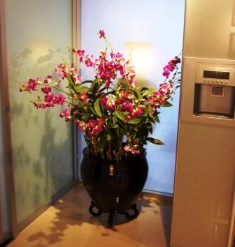 花-キッチン
