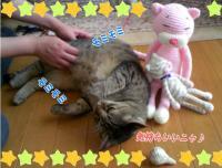 image06032.jpg