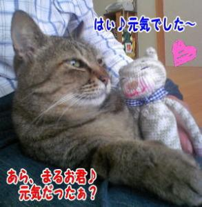 image06152.jpg
