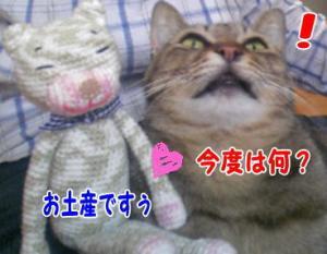 image06153.jpg