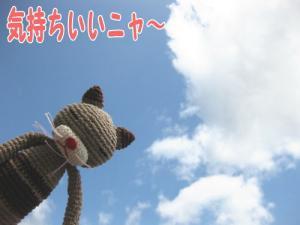 image06233.jpg