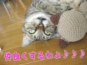 image06256.jpg